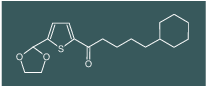 (4-Cyclohexyl)butyl 5-(1,3-dioxolan-2-yl)-2-thienyl ketone