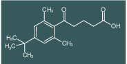 5-(4-tert-Butyl-2,6-dimethylphenyl)-5-oxovaleric acid